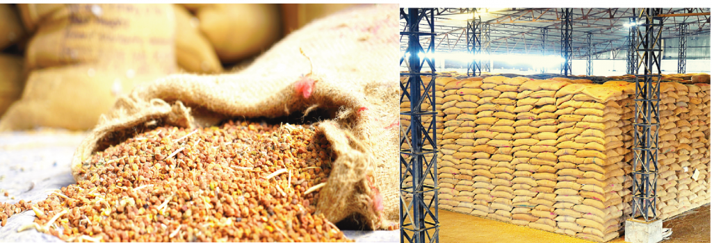 Annual Update FY 2021 – Transforming India into An Agri-Commodity POWERHOUSE !